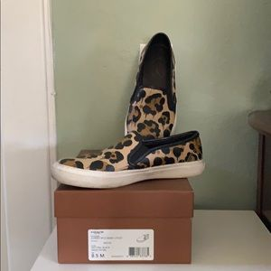 Leopard prints sneakers